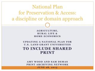 National Plan  for Preservation & Access:  a discipline or domain approach