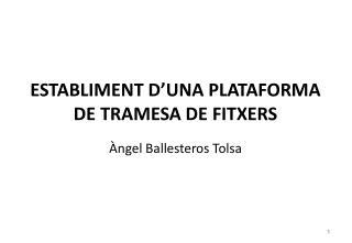 ESTABLIMENT D'UNA PLATAFORMA DE TRAMESA DE FITXERS