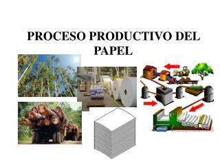 PROCESO PRODUCTIVO DEL PAPEL