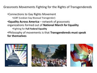 Grassroots Movements Fighting for the Rights of  Transgendereds