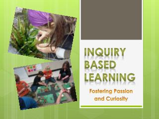 Inquiry Based Learning