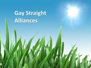 Gay Straight  Alliances