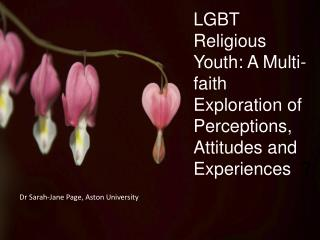 LGBT  Religious Youth: A Multi-faith Exploration of Perceptions,  Attitudes and Experiences   ?