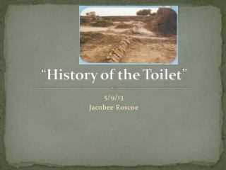 """ History of the Toilet """