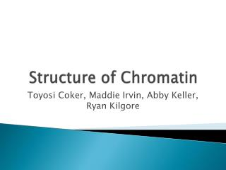 Structure of Chromatin