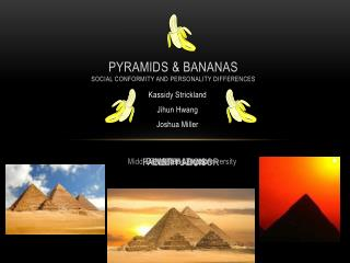Pyramids & Bananas Social conformity and personality differences