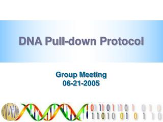 DNA Pull-down Protocol