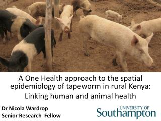 A One Health approach to the spatial epidemiology of tapeworm  in  rural Kenya: