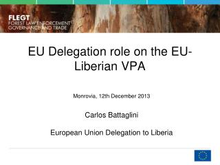 EU  Delegation role  on the EU-Liberian VPA