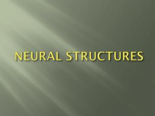 NEURAL STRUCTURES