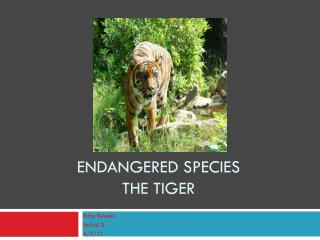 Endangered species the tiger