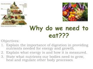 Why do we need to eat???