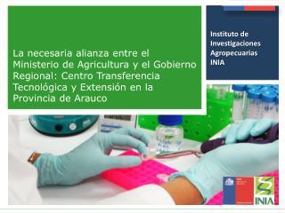 Instituto de Investigaciones Agropecuarias INIA