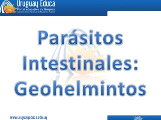 Parásitos  Intestinales: Geohelmintos