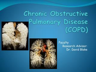 C hronic  O bstructive  P ulmonary  D isease (COPD)