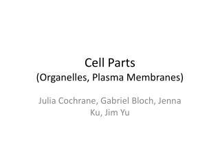 Cell Parts (Organelles, Plasma Membranes)