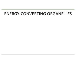 ENERGY-CONVERTING ORGANELLES