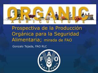 Prospectiva de la Producción Orgánica para la Seguridad  Alimentaria;  mirada  de  FAO