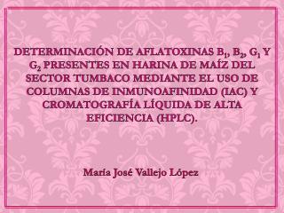 María José Vallejo López
