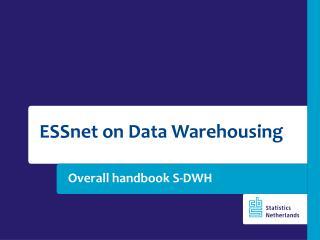 Overall handbook S-DWH