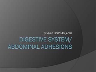 Digestive system/  abdominal adhesions