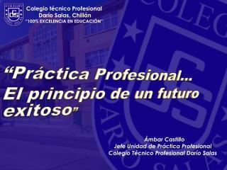 ÁmbarCastillo Jefe Unidad de Práctica Profesional Colegio Técnico Profesional Darío Salas
