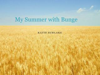 My Summer with Bunge