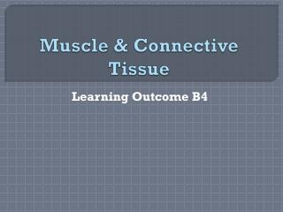 Muscle & Connective Tissue
