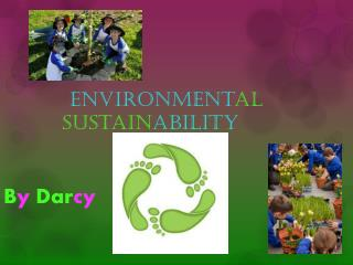 Environment al sustain ability