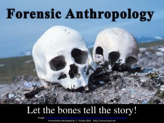 Let the bones tell the story!