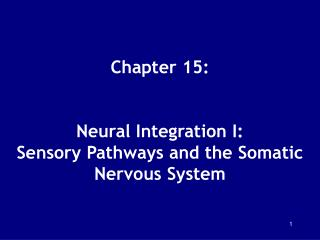 Chapter 15: Neural Integration I: Sensory Pathways and ...