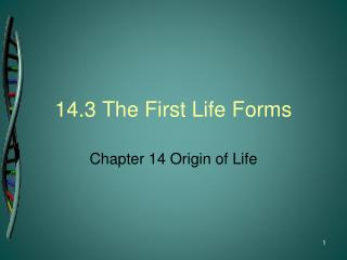 14.3 The First Life Forms
