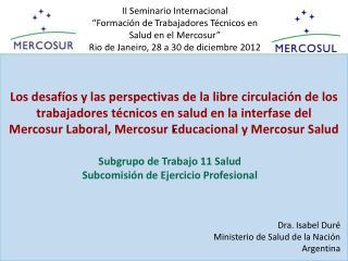 Subgrupo de Trabajo 11 Salud Subcomisión de Ejercicio Profesional