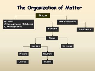 The Organization  of Matter