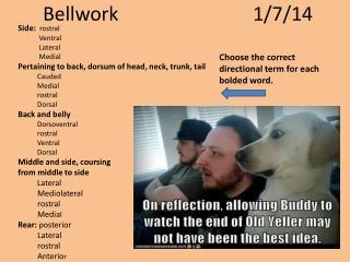 Bellwork 1/7/14