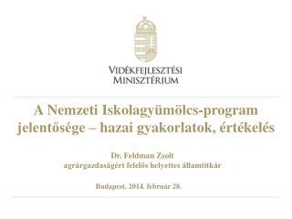 A  N emzeti Iskolagyümölcs-program jelentősége – hazai gyakorlatok, értékelés