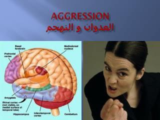 Aggression العدوان و التهجم