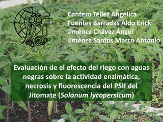 Cantero Téllez Angélica Fuentes Barradas Aldo Erick Jiménez Chávez Ángel