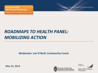 Roadmaps to  health panel:  mobilizing action
