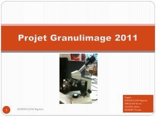 Projet  Granulimage  2011