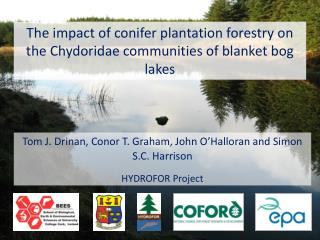 The impact of conifer plantation forestry on the  Chydoridae communities  of blanket bog lakes