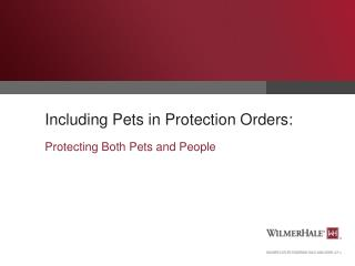 Including Pets in Protection Orders: