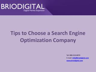 Tips to Choose a Search Engine Optimization Company