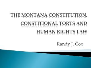 THE MONTANA CONSTITUTION,  CONSTITIONAL  TORTS AND HUMAN RIGHTS LAW