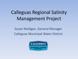 Calleguas Regional Salinity Management Project