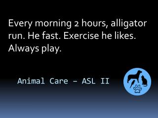 Every morning 2 hours, alligator run. He fast. Exercise he likes. Always play.