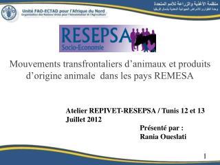 Mouvements transfrontaliers d'animaux et produits d'origine animale  dans les pays REMESA