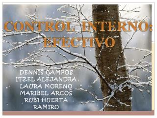 CONTROL  INTERNO:  EFECTIVO