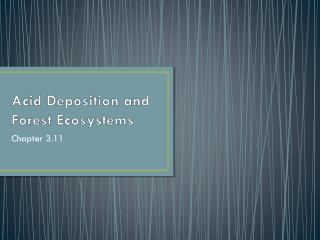 Acid Deposition and Forest Ecosystems