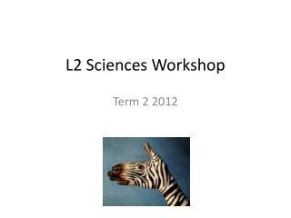 L2 Sciences Workshop